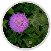 Over A Thistle Round Beach Towel
