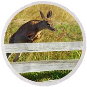 Over The Fence Round Beach Towel