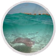 Over-under Water Of A Stingray At Bora Bora Round Beach Towel
