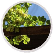 Overhead Grape Harvest - Summertime Dreaming Of Fine Wines Round Beach Towel