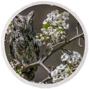 Owl Among The Blossoms Round Beach Towel