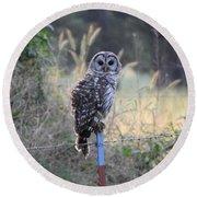 Owl Cherish This Moment Forever Round Beach Towel