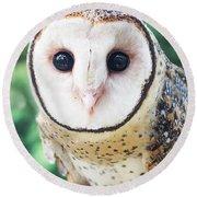 Owl Insight Round Beach Towel