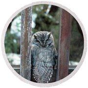 Owl On Deck Round Beach Towel