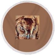 Owl Who? -brown Owl Round Beach Towel