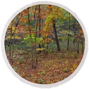 Ozark Forest In Fall 1 Round Beach Towel