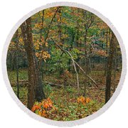 Ozark Forest In Fall 2 Round Beach Towel