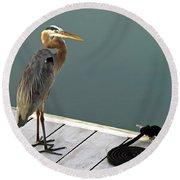 P1104117 Great Blue Heron Round Beach Towel