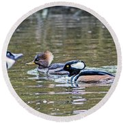 Pa And Ma Hooded Mergansers Round Beach Towel