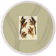 pa FB WilliamTCooper LesserBirdsOfParadise Penny Olsen Round Beach Towel