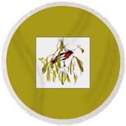 pa TonyOliver AustralianBirds 13 MistletoeBird Tony Oliver Round Beach Towel