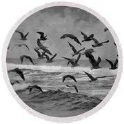 Pacific Gulls Round Beach Towel