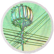 Pacific Science Center Lamp Round Beach Towel