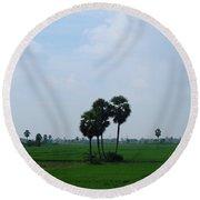 Paddy Fields Near Anantapur, Andhra Pradesh, India Round Beach Towel