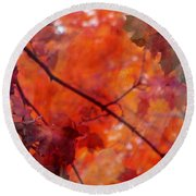 Painted Branches Abstract 5 Round Beach Towel