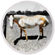 Painted Horse II Round Beach Towel