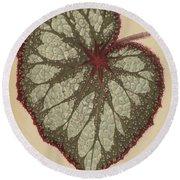 Painted Leaf Begonia Round Beach Towel