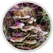 Painted Mushrooms Round Beach Towel
