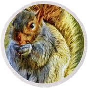 Painted Squirrel  Round Beach Towel