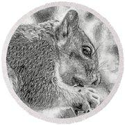 Painted Squirrel Round Beach Towel