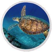 Painted Turtle Round Beach Towel