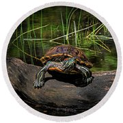 Painted Turtle Sunning Itself On A Log Round Beach Towel