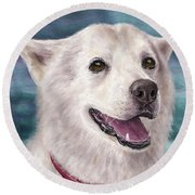 Painting Of A White And Furry Alaskan Malamute Round Beach Towel