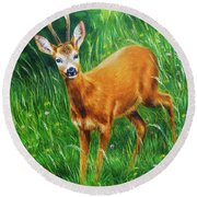 painting of young deer in wild landscape with high grass. Eye contact. Round Beach Towel