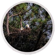 Pair Of Bald Eagles In Nest Round Beach Towel