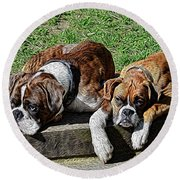 Pair Of Boxers Round Beach Towel