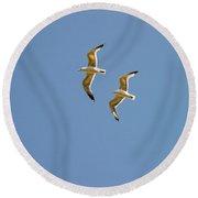 Pair Of Herring Gulls Round Beach Towel