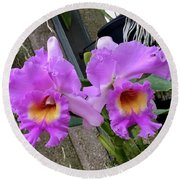 Pretty Purple Orchids Round Beach Towel