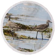 Pair Of Willets Round Beach Towel