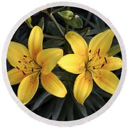 Pair Of Yellow Lilies Round Beach Towel