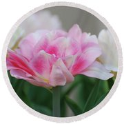 Pale Pink And White Parrot Tulips In A Garden Round Beach Towel