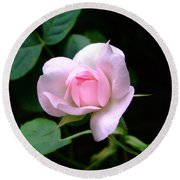 Pale Pink Rose Round Beach Towel