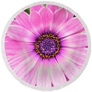 Pale Purple Flower Round Beach Towel