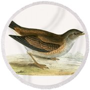 Pale Thrush Round Beach Towel