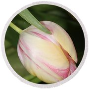 Pale Yellow And Pink Tulip Round Beach Towel