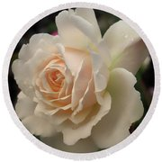 Pale Yellow Rose After The Rain - Glow Round Beach Towel