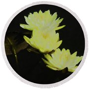Pale Yellow Water Lilies Round Beach Towel