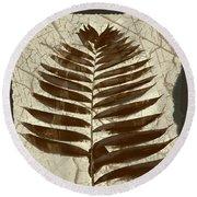 Palm Fossil Sandstone  Round Beach Towel