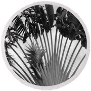 Palm Frons Round Beach Towel
