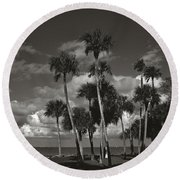 Palm Group In Florida Bw Round Beach Towel
