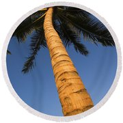 Palm In Blue Sky Round Beach Towel