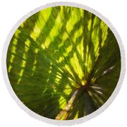 Palm Leaves And Morning Light Round Beach Towel