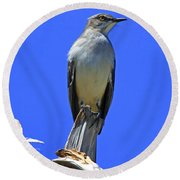 Palm Mocking Bird Round Beach Towel by Deborah Benoit