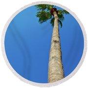 Palm Tree Against Blue Sky Round Beach Towel