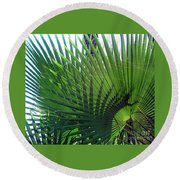 Palm Tree, Big Leafs Round Beach Towel