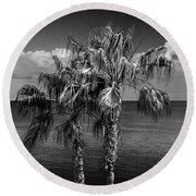 Palm Trees In Black And White At Laguna Beach Round Beach Towel